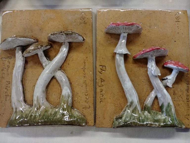 Ceramic tiles, underglaze, mushrooms, Fly agaric, Birch boletes